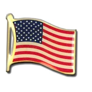 PIN US FLAG